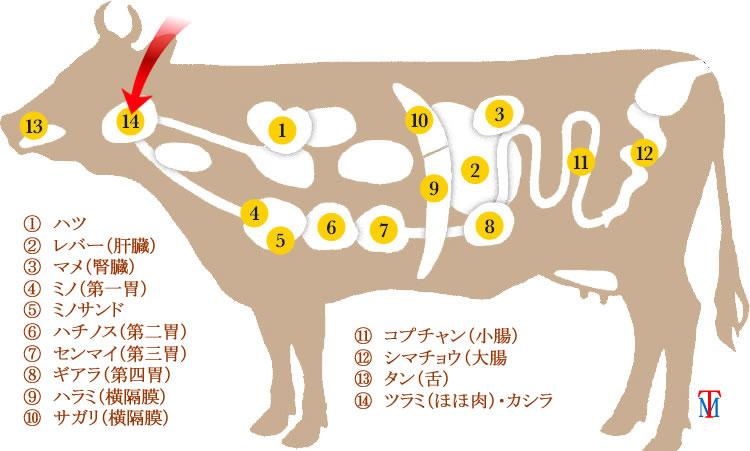 牛のカシラ