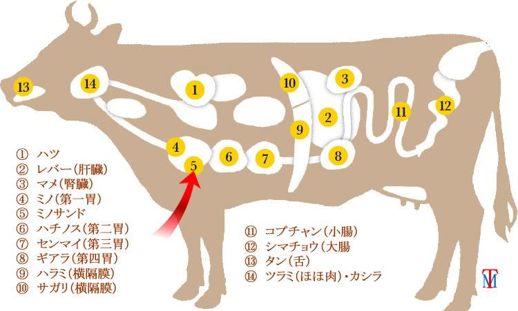 牛ホルモンミノ