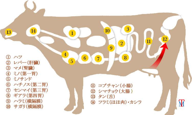 牛ホルモンテッチャン