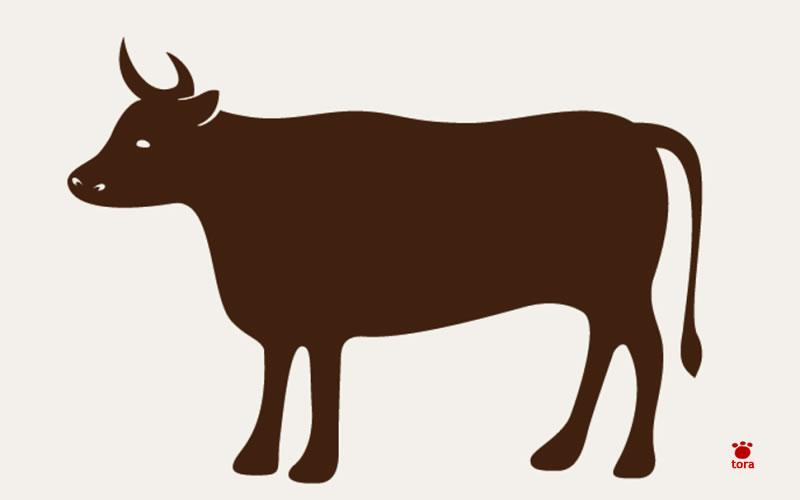 牛ホルモン