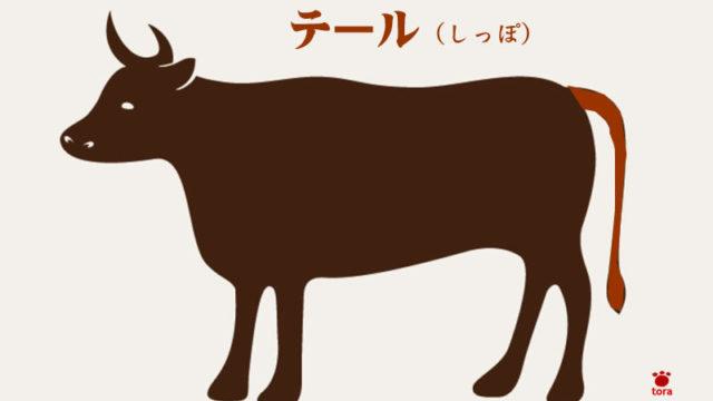 牛の部位テール